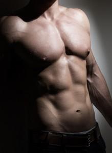 Young Muscular Man Torso
